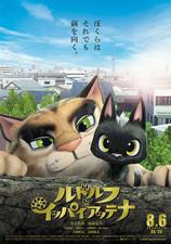 Gatos: un viaje de vuelta a casa