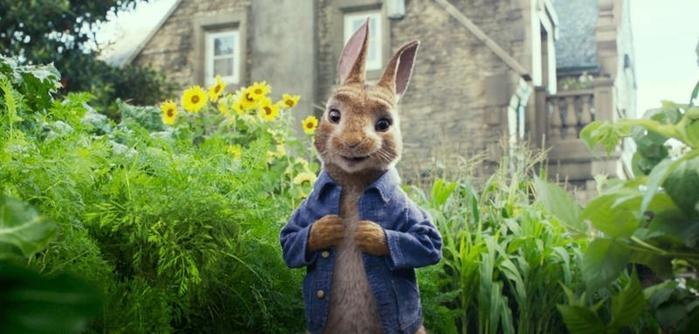 Peter Rabbit imagen 4