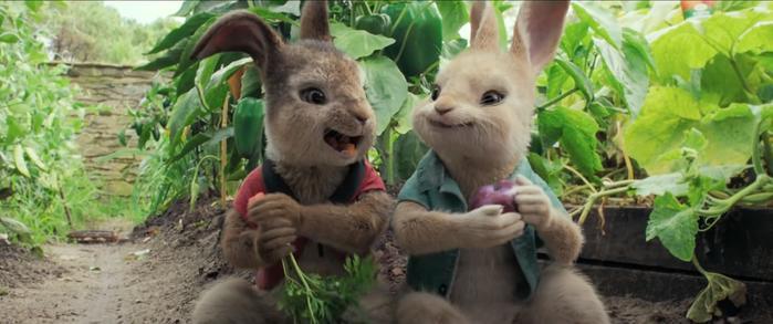 Peter Rabbit imagen 3