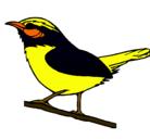 Dibujo Pájaro silvestre pintado por turpial