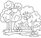 Dibujo Bosque pintado por jhonn
