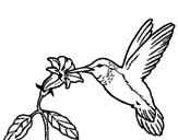 Dibujo Colibrí y una flor pintado por ange14