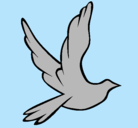 Dibujo Paloma de la paz al vuelo pintado por mairely