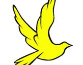 Dibujo Paloma de la paz al vuelo pintado por jeyson