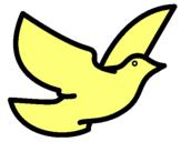 Dibujo Paloma de la paz pintado por wjfhffjklfh