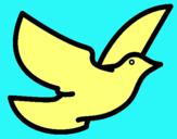 Dibujo Paloma de la paz pintado por juyter