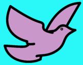 Dibujo Paloma de la paz pintado por CarmenMurcia