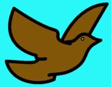 Dibujo Paloma de la paz pintado por brissell