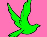Dibujo Paloma de la paz al vuelo pintado por martinico