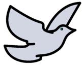 Dibujo Paloma de la paz pintado por mjgypansc