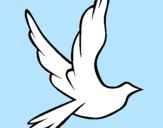Dibujo Paloma de la paz al vuelo pintado por anatibo