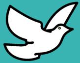 Dibujo Paloma de la paz pintado por masias3