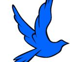 Dibujo Paloma de la paz al vuelo pintado por jkmnbl