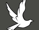 Dibujo Paloma de la paz al vuelo pintado por bazzel
