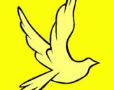 Dibujo Paloma de la paz al vuelo pintado por tyu76