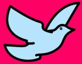 Dibujo Paloma de la paz pintado por Haoy