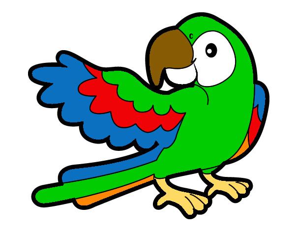 Dibujos de loros para colorear for Dibujos infantiles pintados
