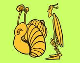 Dibujo Grillo y Caracol pintado por amalia