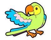 Dibujo Loro con ala abierta pintado por pexoxa