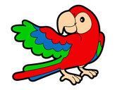 Dibujo Loro con ala abierta pintado por jhonn117