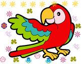Dibujo Loro con ala abierta pintado por Alexa04