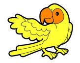 Dibujo Loro con ala abierta pintado por mayder