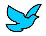 Dibujo Paloma de la paz pintado por everly