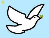 Dibujo Paloma de la paz pintado por valuchi1D