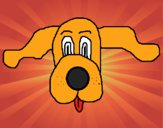 Cara de Basset hound