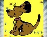 Perro con viento