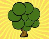 Árbol con hojas redondas