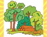 Dibujo Bosque 2 pintado por AnaLi05
