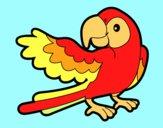 Dibujo Loro con ala abierta pintado por ojodehorus