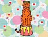 Dibujo Tigre de circo pintado por da12306