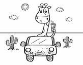 Jirafa conduciendo