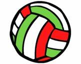 Pelota de voleibol