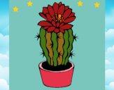 Dibujo Cactus con flor pintado por LunaLunita