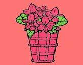 Cesta de flores 3