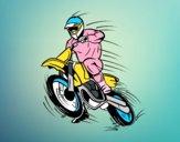 Moto de motocross