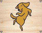 Dibujo Perro saltando pintado por Zafi2005