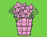 Dibujo Cesta de flores 3 pintado por amalia