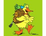 Pato excursionista