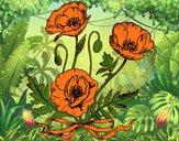 Dibujo Unas amapolas pintado por amalia
