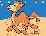 Dibujo Camello 1 pintado por LunaLunita