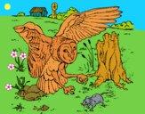 Dibujo Búho cazando pintado por LunaLunita
