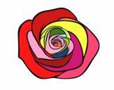 Dibujo Flor de rosa pintado por RocioNayla