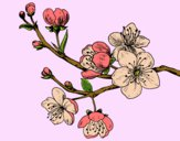 Dibujo Rama de cerezo pintado por ItzelFL