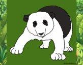 Dibujo Oso panda 1 pintado por lunadangel