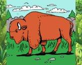 Dibujo Búfalo  pintado por jrluisb