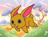 Conejo de campo